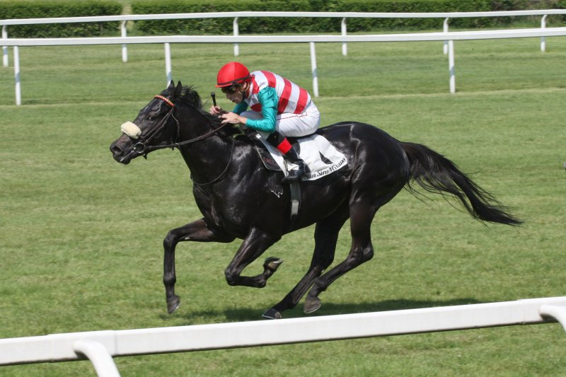 ARPINATI Winning the G3 Premio Primi Passi June 30th, 2013