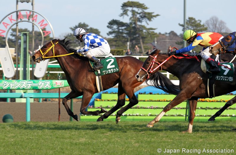 ONE CARAT Winning the G3 Ocean Stakes Courtesy Japan Racing Association