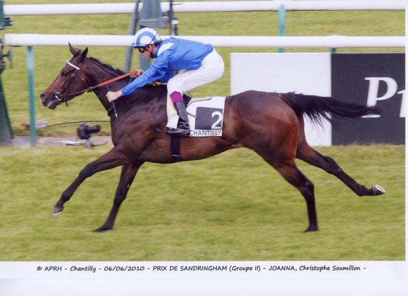 JOANNA winning the G2 Prix de Sandringham ~ Courtesy APRH