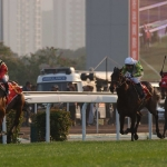 Colombo Exacta in Hong Kong Gold Cup with FALBRAV 1st and RAKTI 2nd ~ Courtesy Stefano Grasso