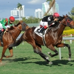 POINT OF ENTRY, defeating ANIMAL KINGDOM in the G1 Gulfstream Park Handicap, February 9th, 2013
