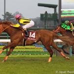 GRANDEZZA Winning the G2 Spring Stakes Courtesy Japan Racing Association