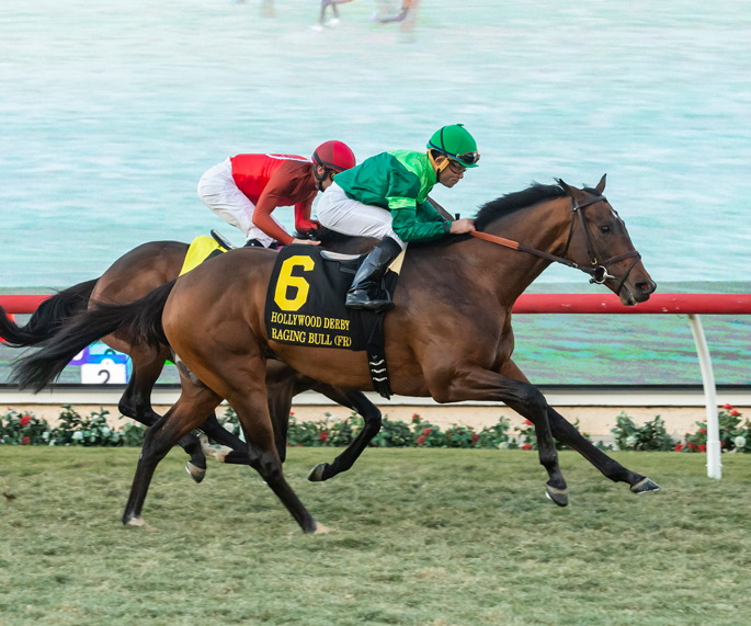 RAGING BULL Winning the Grade 1 Hollywood Derby, Dec 1st, 2018. Owned by Peter M. Brant and purchased as a yearling by Eugenio Colombo for 95,000 EUR from the Wildenstein Dispersal, Goff's 2016. © BENOIT PHOTO